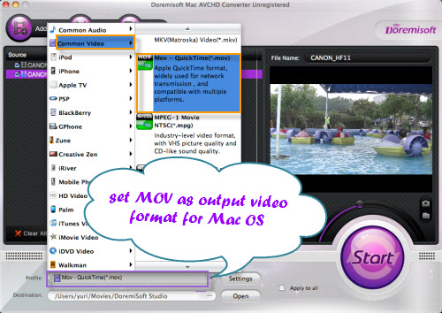 Doremisoft Mac Video Converter Screenshot