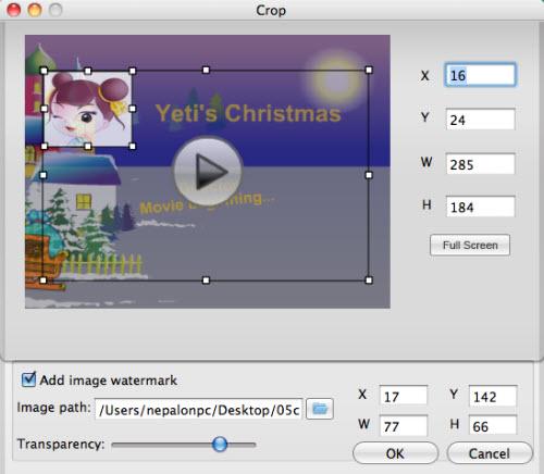 crop swf video
